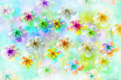 Photograph - Spring Flowers Abstract 6 by Debbie Portwood
