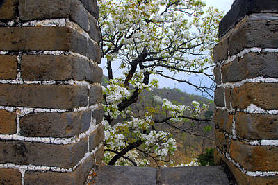 Spring Flowers At The Great Wall Art Print