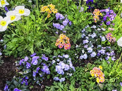 Soil Digital Art - Spring Flowers  by Chris Berry