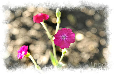 Photograph - Spring Flowers by Dan Friend