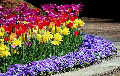Spring Flowers  Original