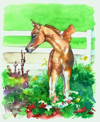 Painting - Spring Foal by Christy  Freeman