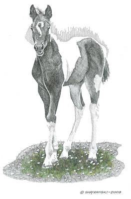 Wall Art - Drawing - Spring Foal by Paul Shafranski
