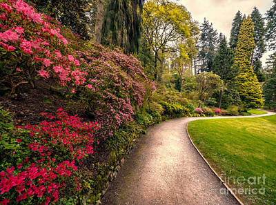 North Wales Photograph - Spring Footpath by Adrian Evans