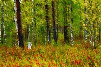 Fuzzy Digital Art - Spring Forest. by   larisa Fedotova