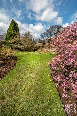 Lawn Digital Art - Spring Garden by Adrian Evans
