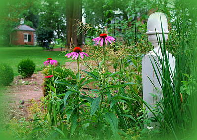 Photograph - Spring Garden At Wheatland by Mary Beth Landis