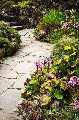 Perennial Photograph - Spring Garden by Elena Elisseeva