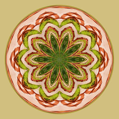 Digital Art - Spring Grasses Mandala by Bill Barber
