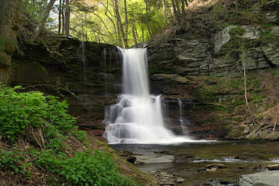 Photograph - Spring Green Emerges At Sheldon Reynolds Waterfall by Gene Walls