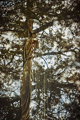 Photograph - Spring Grove 2 by Scott Meyer