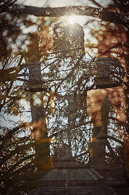 Photograph - Spring Grove 8 by Scott Meyer