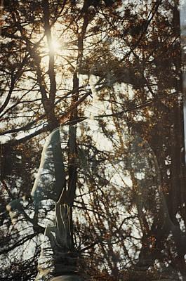 Cincinnati Photograph - Spring Grove 9 by Scott Meyer