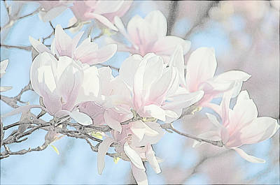 Art Print featuring the photograph Spring Has Arrived 3 by Susan  McMenamin