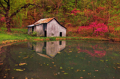 Spring Has Come To The Appalachia Art Print
