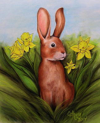 Drawing - Spring Has Sprung by Catherine Howley