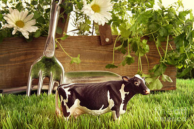 Photograph - Spring Herbs And Flowers In The Grass With Toy Cow by Sandra Cunningham