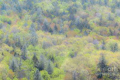 Photograph - Spring Hillside Impressions by Alan L Graham