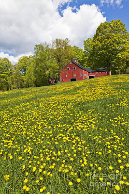 Photograph - Spring Hilltop Barn by Alan L Graham