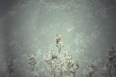 Photograph - Spring Horizon  by Mark Ross