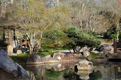 Photograph - Spring In A Japanese Garden by Maria Urso