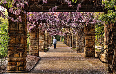Photograph - Spring In Fort Worth Botanic Garden by Janet Maloy