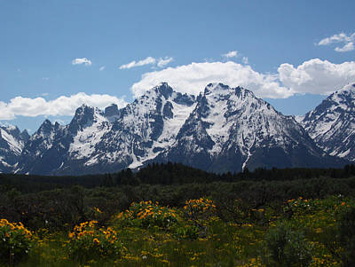 Spring In Grand Tetons National Park Art Print