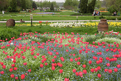 Bucharest Photograph - Spring In Herastrau Park In The City by Martin Zwick