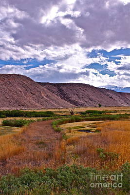 Owens River Photograph - Spring In Pleasant Valley by Tina Slee