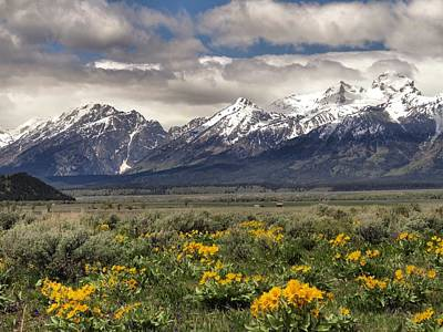 Spring In The Mountains Art Print by Dan Sproul
