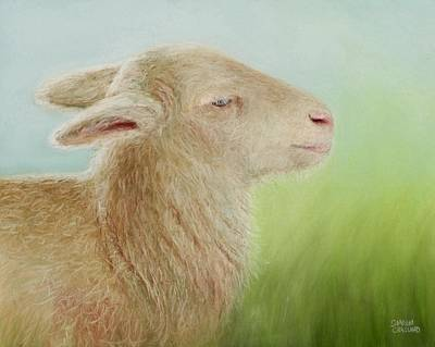 Pet Portraits Digital Art - Spring Lamb by Sharon Challand