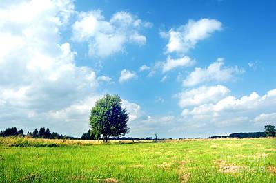 Cornfield Photograph - Spring Landscape by Michal Bednarek