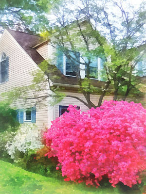 Photograph - Spring - Magenta Azalea Garden by Susan Savad
