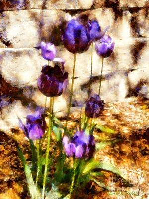 Photograph - Spring Morning Tulips by Janine Riley