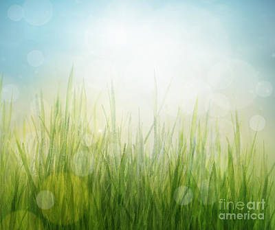 Spring Or Summer Abstract Season Nature Background  Art Print by Mythja  Photography
