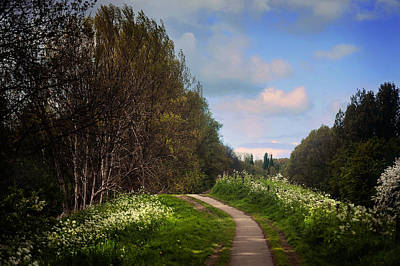 Photograph - Spring Path Along The River. Netherlands by Jenny Rainbow
