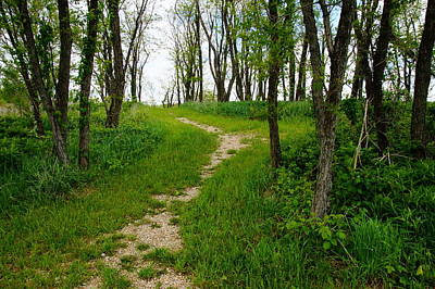 Photograph - Spring Path by Mike Murdock