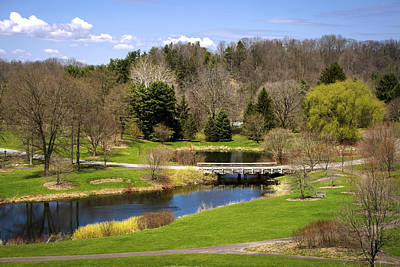 Spring Pond Landscape Print by Christina Rollo