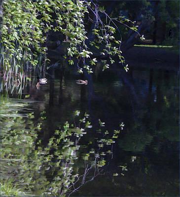 Photograph - Spring Pond by Vladimir Kholostykh