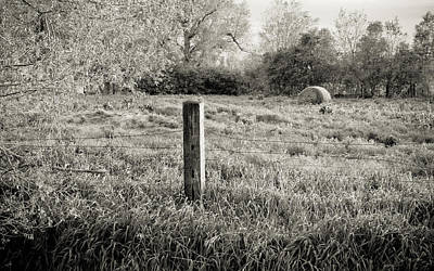 Spring Post And Bale In Black N White Art Print by Tracy Salava