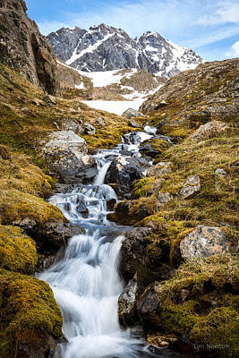 Photograph - Spring Reaches The High Passes by Tim Newton