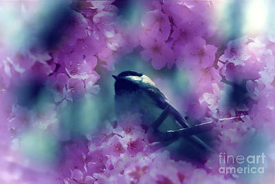 Digital Art - Spring Rhapsody Blossoms by Cathy  Beharriell