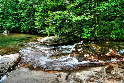 Photograph - Spring River by LaRoque Photography