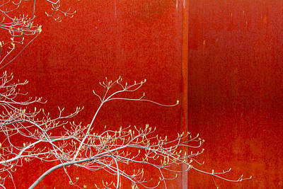 Art Print featuring the photograph Spring Rust by Takeshi Okada