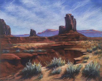 Spring Sage Monument Valley Az Art Print