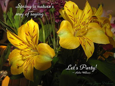 Photograph - Spring Says Lets Party by Joyce Dickens
