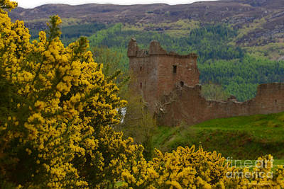 Photograph - Spring Scotland Urquhart Castle Ruins Loch Ness  by Schwartz Nature Images