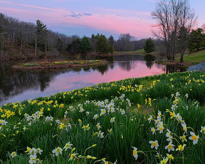 Spring Serenity Print by Bill Wakeley
