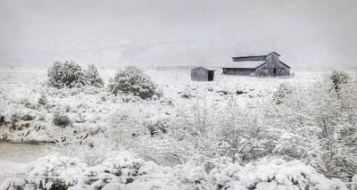 Winter Storm Digital Art - Spring Snow Storm by Lori Deiter