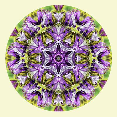 Photograph - Spring Splendor Mandala by Beth Sawickie
